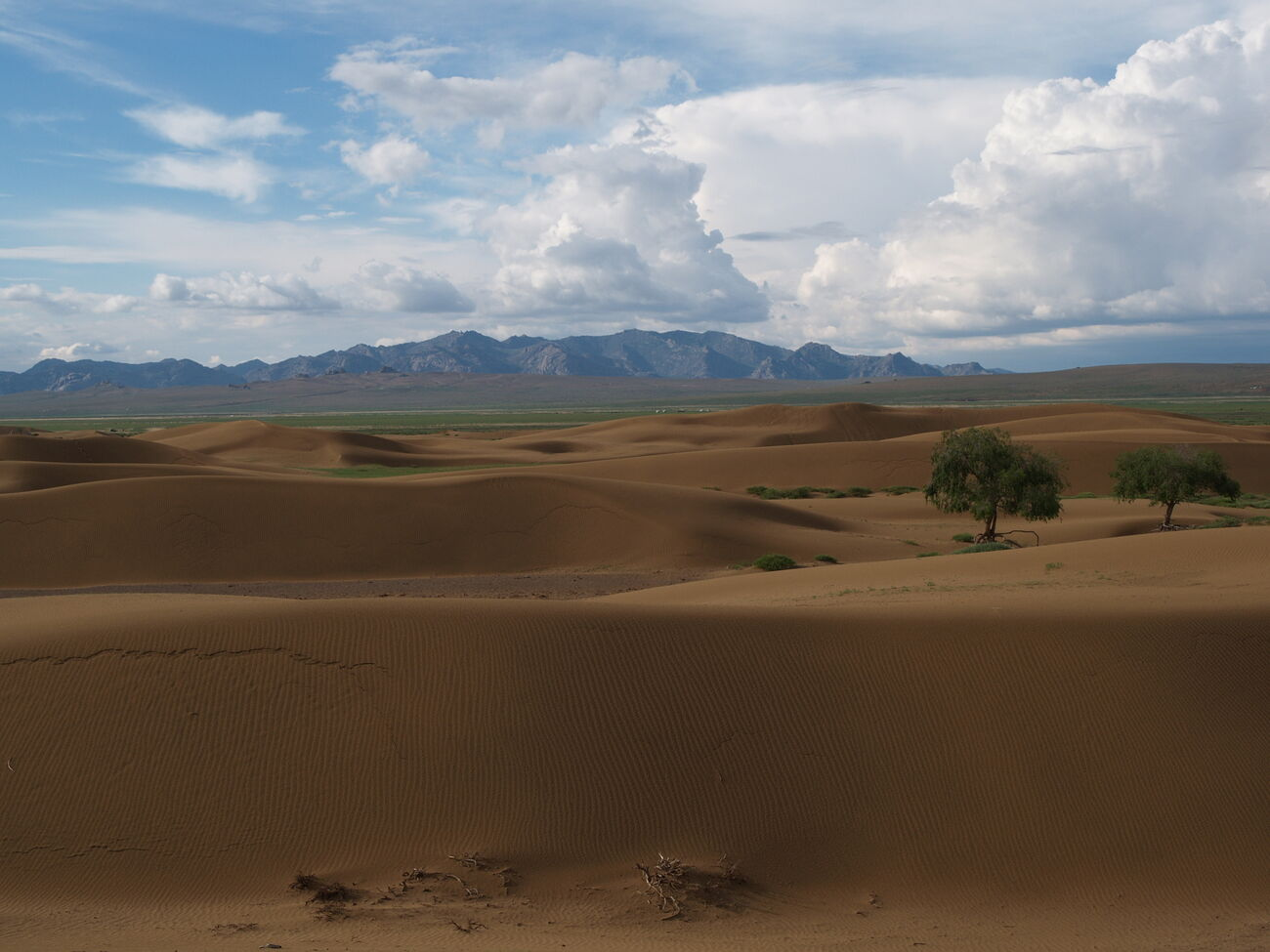 Sand Dunes Camels Monasteries Mongolia
